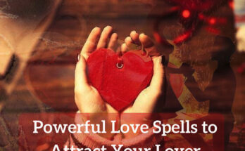 Expert Vashikaran specialist in New Zealand